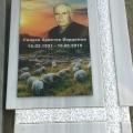 триплекс, паметници, Варна, Тополи